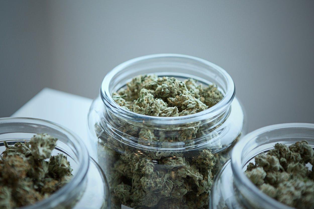 weed-web