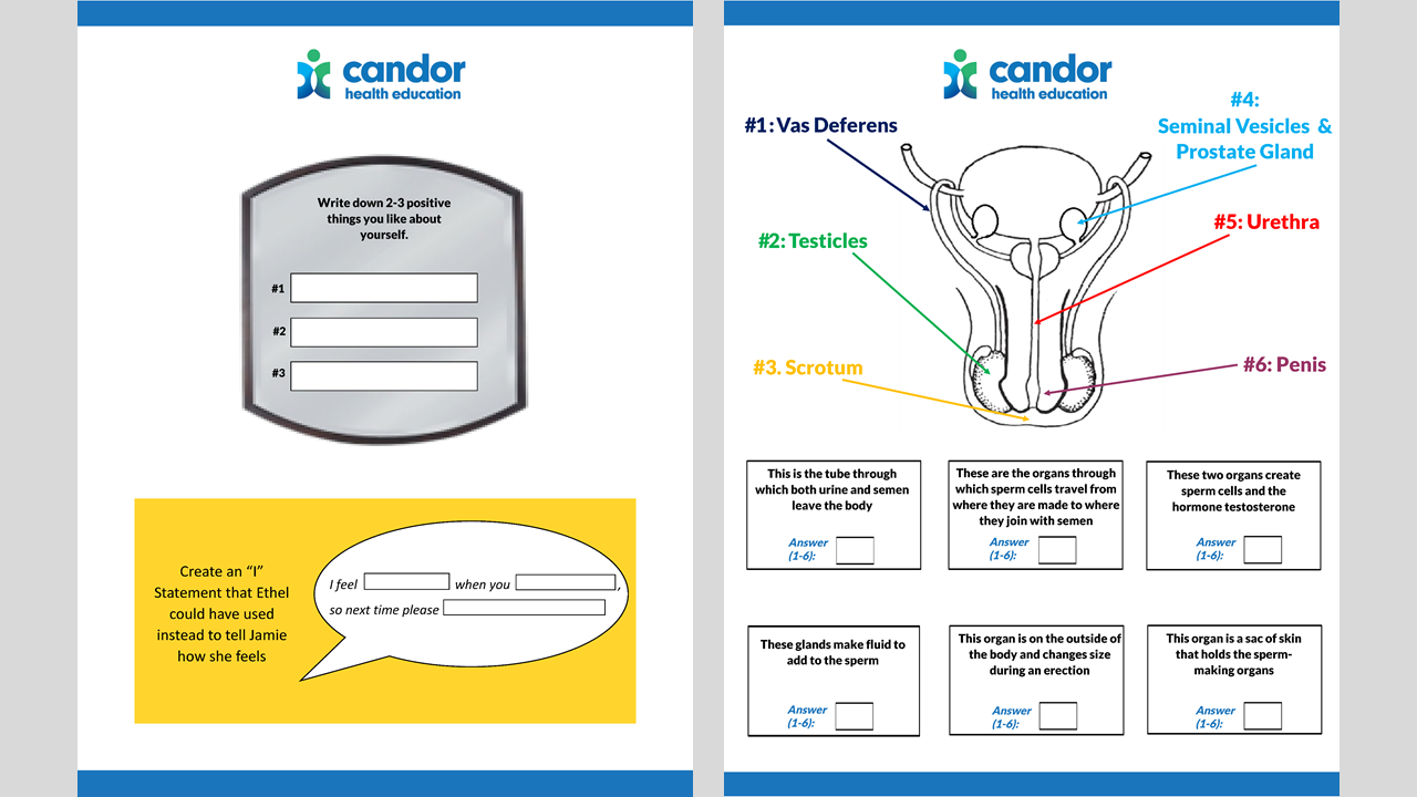 Example Interactive pdf